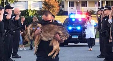 Usa: l'ultimo straziante saluto ad Hunter, il cane poliziotto malato di cancro
